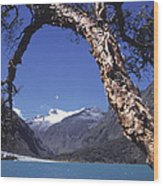 Lake Llanganuco Peru Wood Print