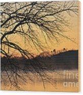 Lake Louise Sunrise Through The Trees Wood Print