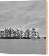 Lake Mattamuskeet Wood Print