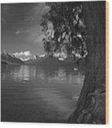 Lake Mcdonald In The Spring Wood Print