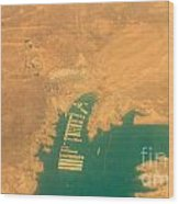 Lake Mead From The Air Wood Print