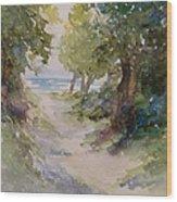 Lake Michigan Beach Path Wood Print