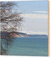 Lake Michigan Bluffs Wood Print