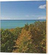 Lake Michigan Cut River 1 Wood Print
