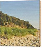 Lake Michigan Dunes 01 Wood Print