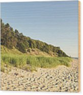 Lake Michigan Dunes 02 Wood Print
