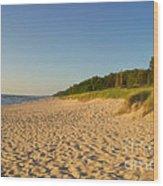 Lake Michigan Dunes 03 Wood Print