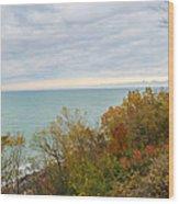 Lake Michigan Fall Wood Print