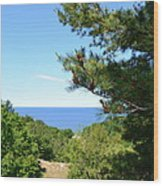 Lake Michigan From The Top Of The Dune Wood Print