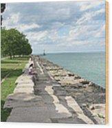 Lake Michigan Shore Near Foster Ave Beach Wood Print