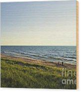 Lake Michigan Shoreline 01 Wood Print