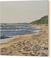Lake Michigan Shoreline 03 Wood Print