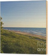 Lake Michigan Shoreline 05 Wood Print