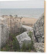 Lake Michigan Shoreline Wood Print