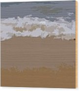 Lake Michigan Shoreline Wood Print