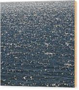 Lake Michigan Sparkling Water Wood Print