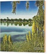 Lake Mindon Campground California Wood Print