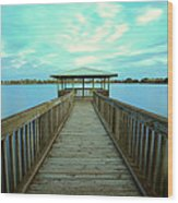 Lake Monger Western Australia Wood Print