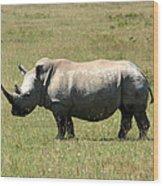 Lake Nakuru White Rhino Wood Print