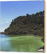 Lake Ngakoro Rotorua New Zealand Wood Print