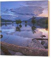 Lake Ocoee Wood Print
