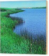 Lake Of The Shining Waters Wood Print