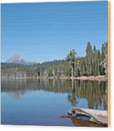 Lake Of The Woods 1 Wood Print