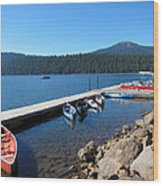 Lake Of The Woods Boat Harbor Wood Print