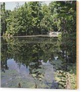 Lake On The Magnolia Plantation With White Bridge Wood Print