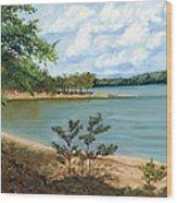 Lake Ouachita Wood Print
