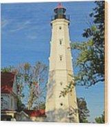 Lake Park Light House 2 Wood Print