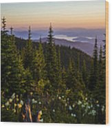 140701a-042 Lake Pend Oreille From The Cabinets Wood Print