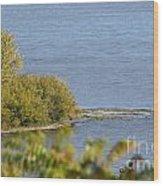 Lake Pepin Wood Print