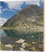 Lake Piccolo - Val Di Sole Wood Print