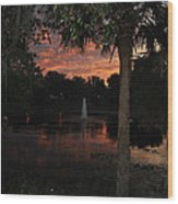 Lake Play Florida Wood Print