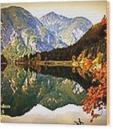 Lake Scene H A Wood Print