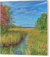 Lake Sixteen Wood Print