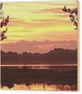 Lake Spivey Morning Wood Print
