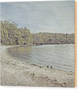 Lake St. Clair In Tasmania Wood Print