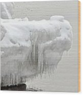 Lake Superior Ice Alligator Wood Print