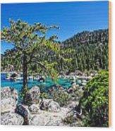 Lake Tahoe Bonsai Tree Wood Print by Scott McGuire