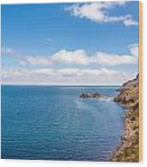 Lake Titicaca Coastline  Wood Print
