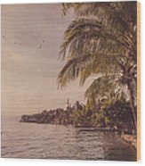 Lake Toba Wood Print