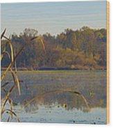 Lake Towhee In Autumn Wood Print