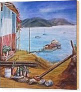 Lake Valle De Bravo Mexico Wood Print by Nora Vega
