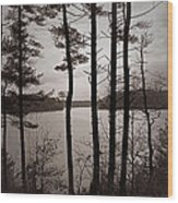 Lake View Wood Print