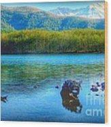 Lake View Of Mount Saint Helens  Wood Print