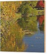 Lake Winona Autumn 13 Wood Print