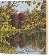 Lake Winona Autumn 15 Wood Print