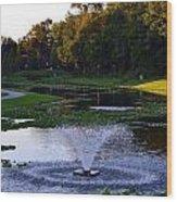 Lake With Fountain Wood Print